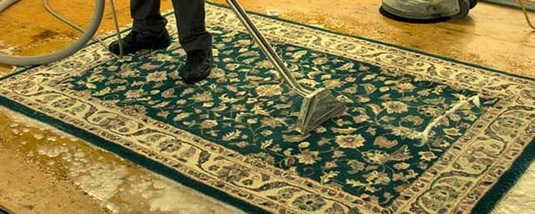 Best Rug Cleaning Cottesloe