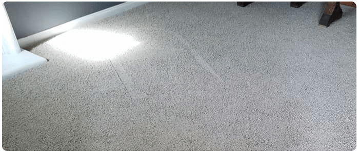 End of Lease Carpet Cleaning Forrest