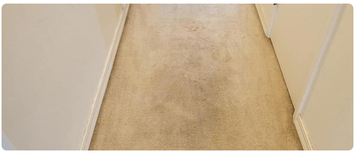 Three Awesome Reasons You Need to Clean Your Carpet